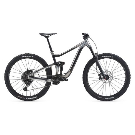 """MTB Giant Reign 29"""" 2 Tg. Small 2020"""