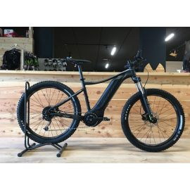 e-mtb GIANT Fathom E+ 3 Power Tg. Medium 2020